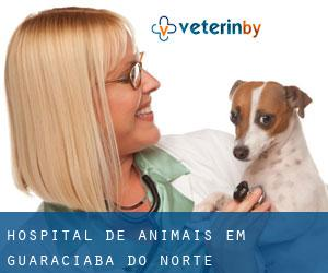 Hospital de animais em Guaraciaba do Norte